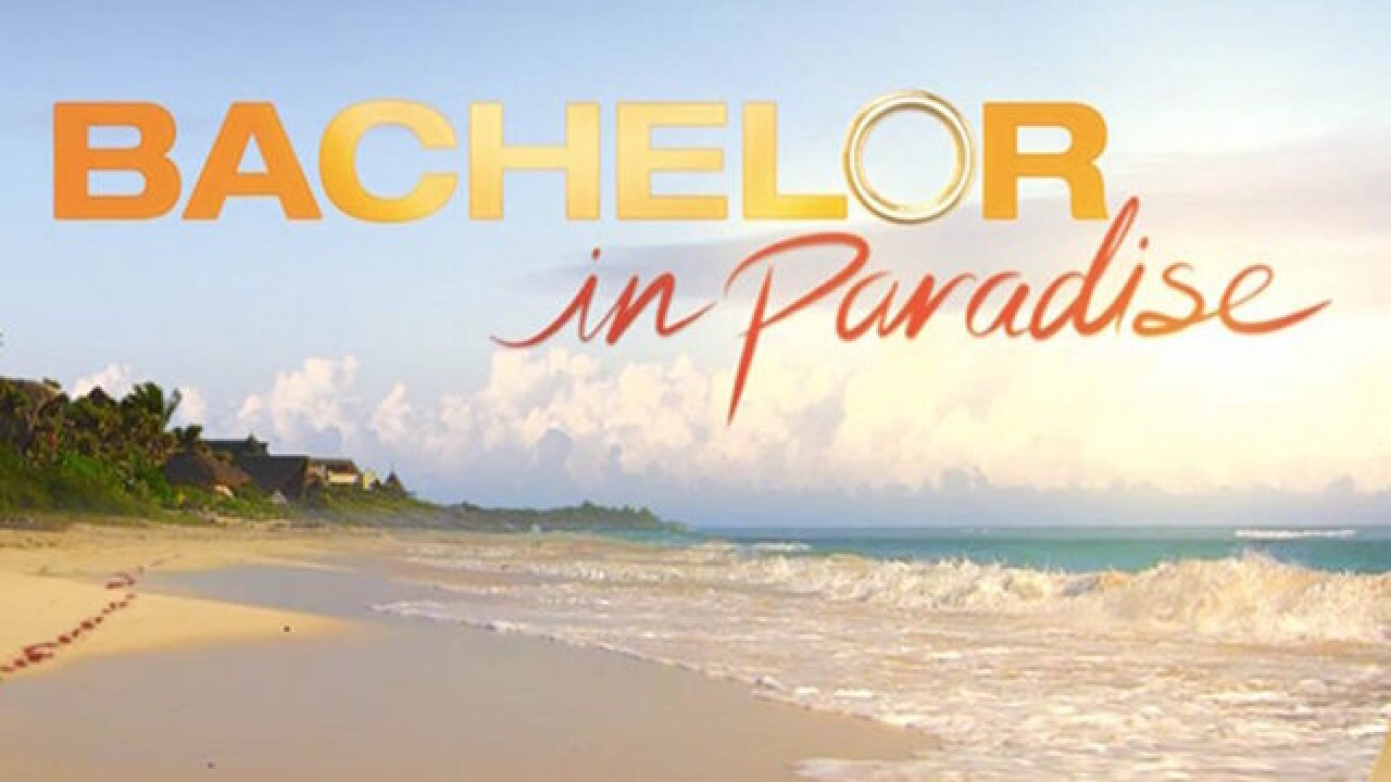 ABC president: 'Bachelor in Paradise' incident 'brought to light some safety issues'
