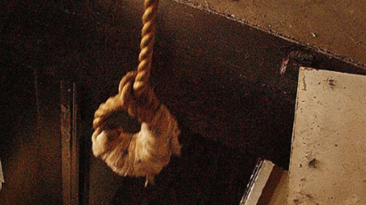 13,000 people hanged in secret at Syrian prison, Amnesty International says