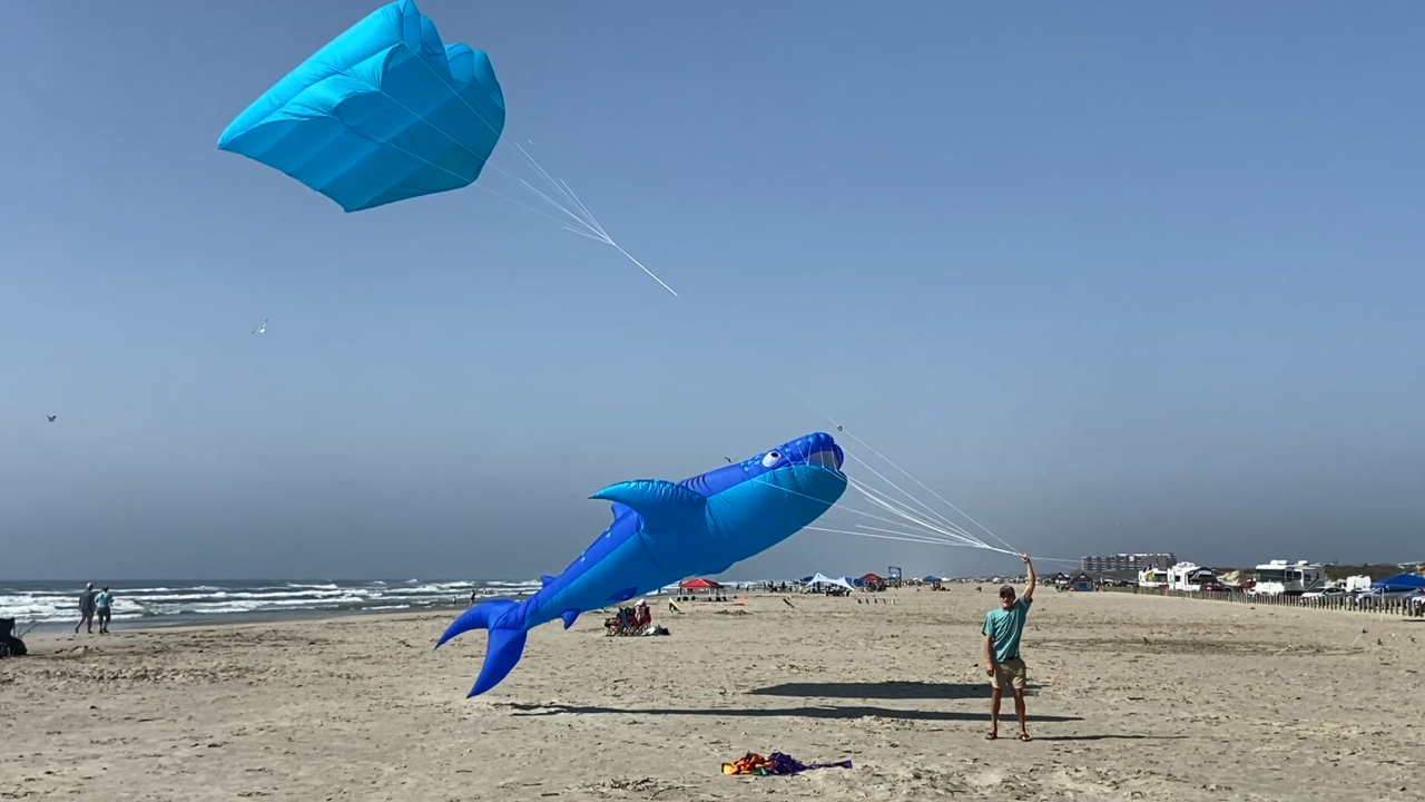 Kite Day.PNG