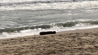 Unexploded ordnance at Cape Hatteras beach (October 22).jpg
