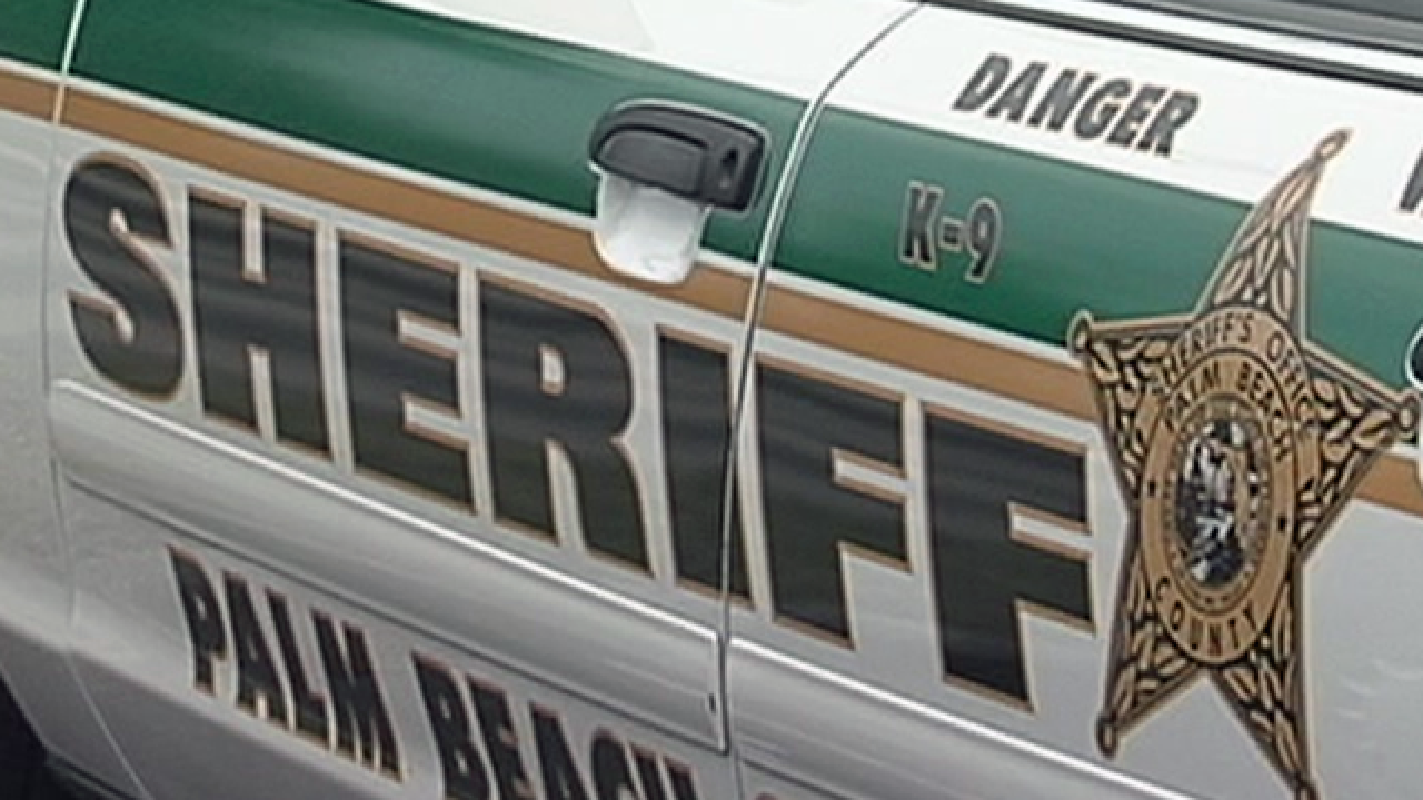 Review of PBSO Internal Affairs Dept. released