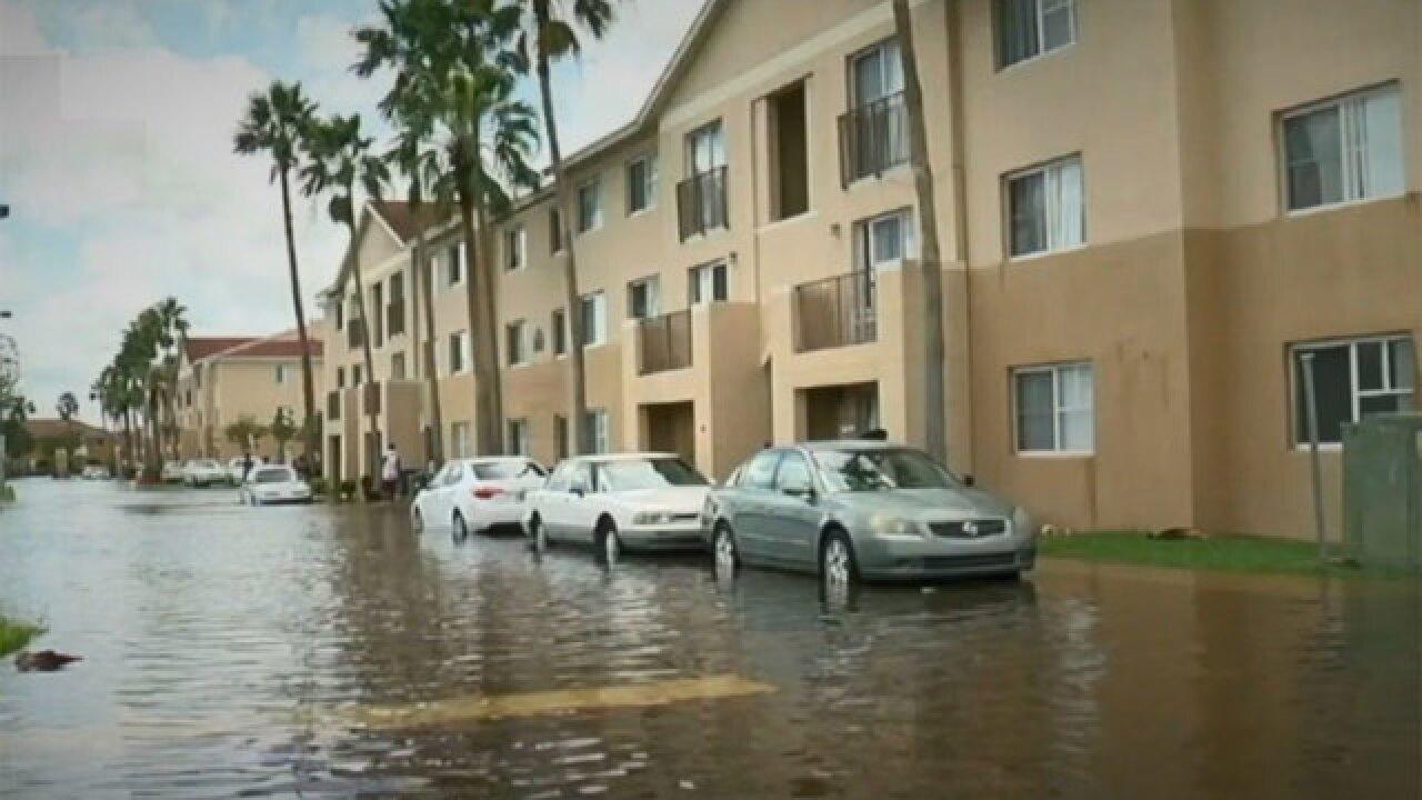 Sabal Chase residents reflect on Hurricane Irma