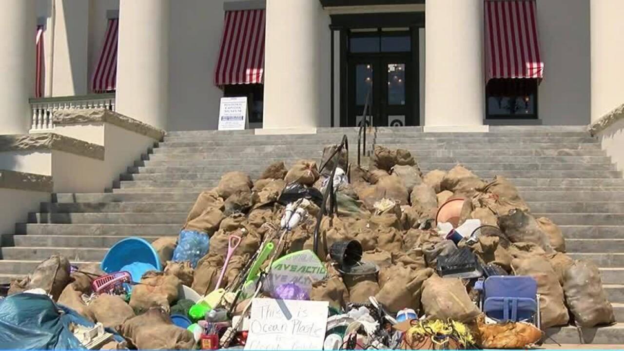 pollultion on capitol steps.jpg