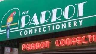Montana Made: The Parrot