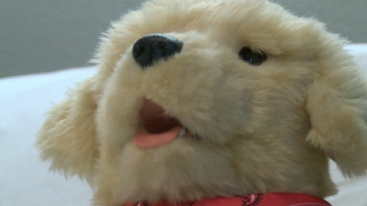 San Diego dementia patients get help from robotic pets