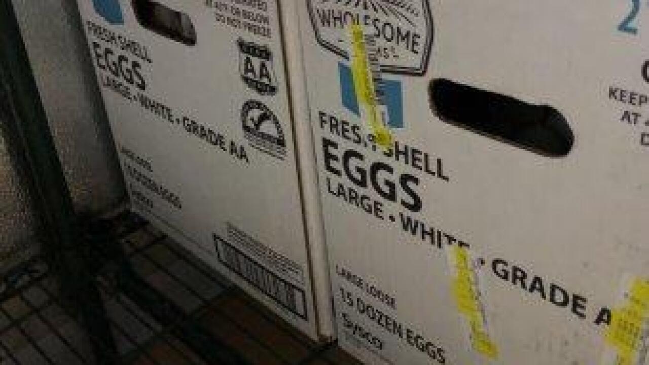 23. 2 egg cases.jpg