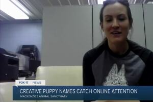 Puppies named after Schitt's Creek characters catch celeb's eye