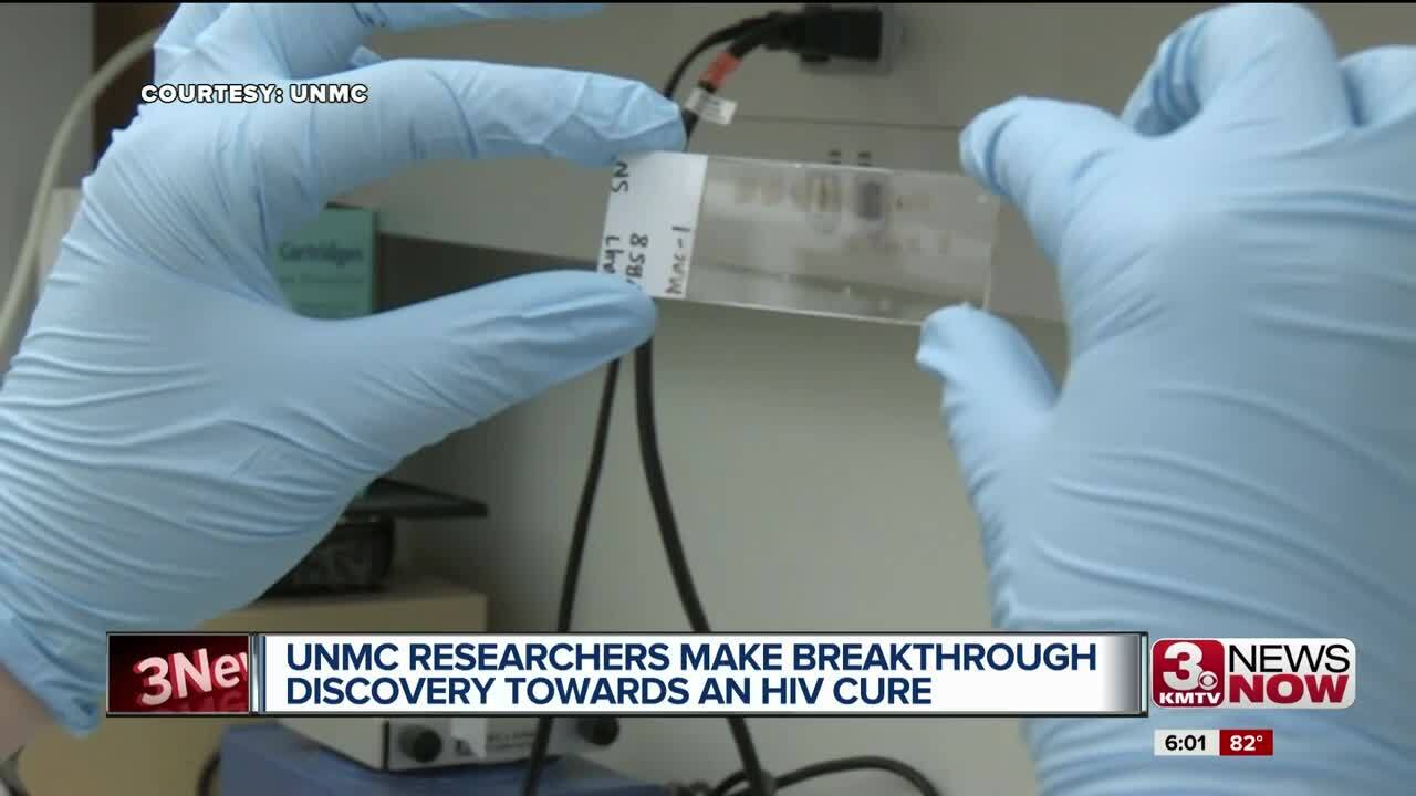 Researchers Successfully Cure HIV in an Animal for First