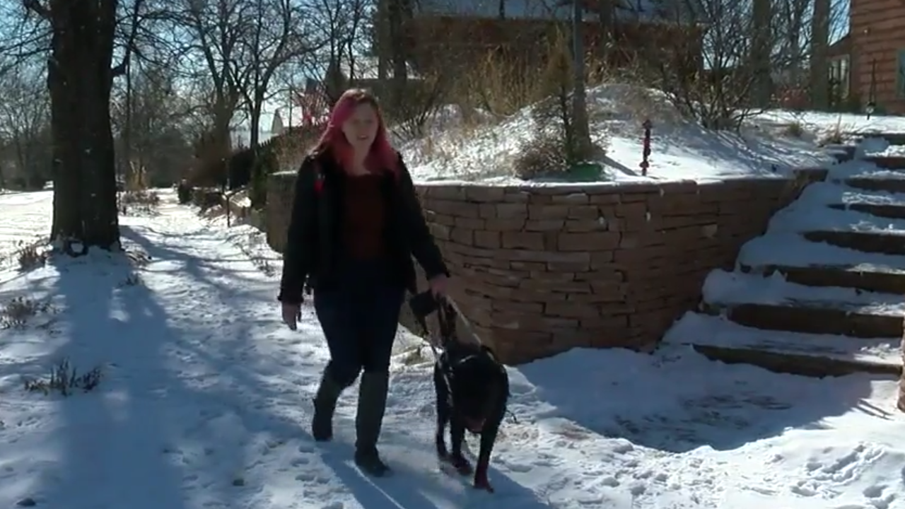 Blind woman in Denver says Uber driver denied her a ride because of her service dog