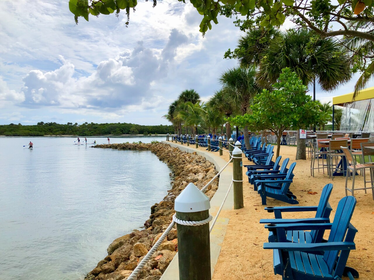 Blue lawn chairs overlooking water