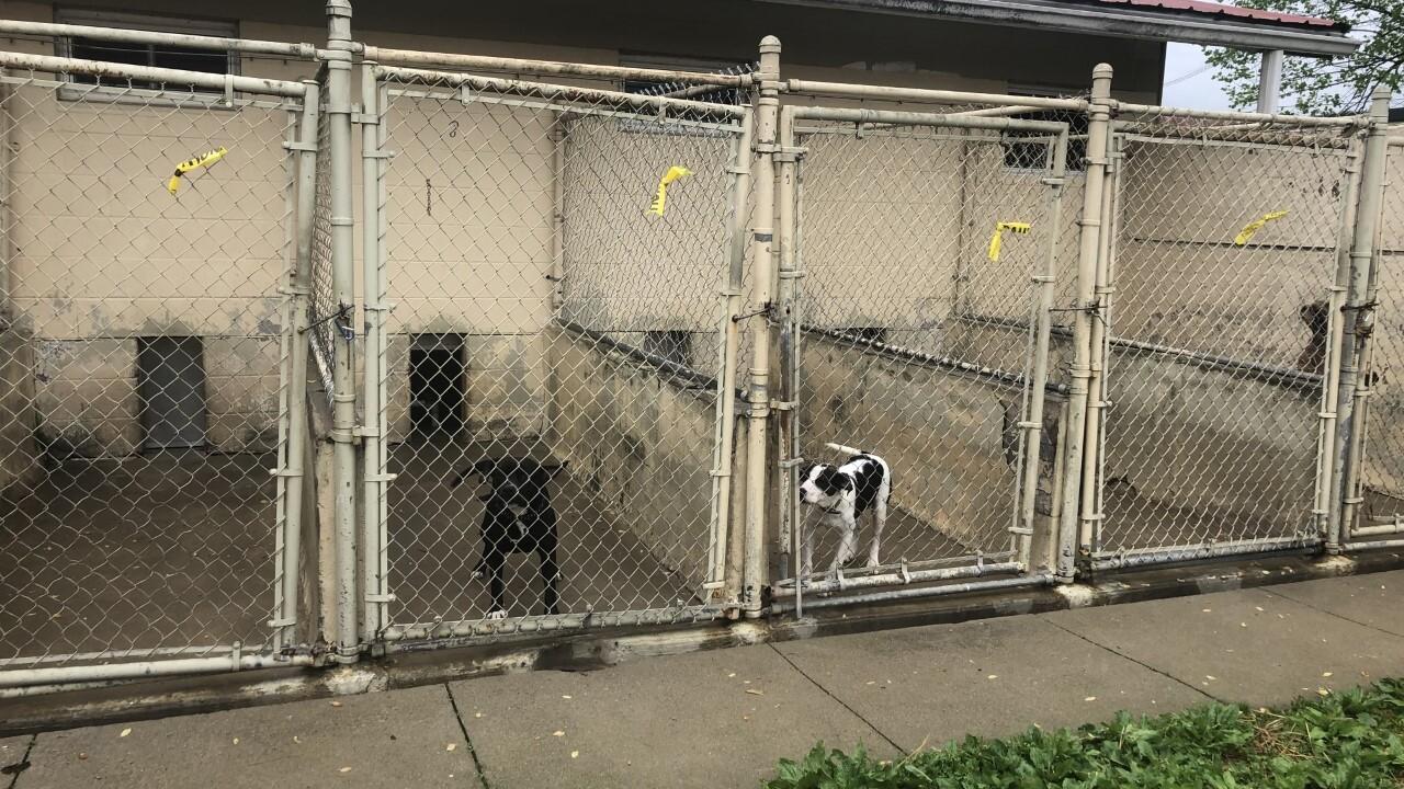 Franklin County Humane Society.jpg