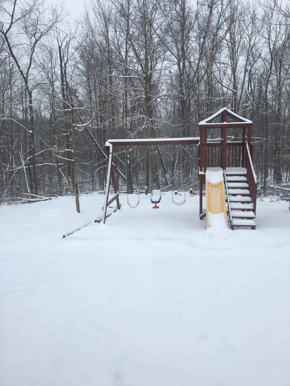 January 12 Snow (6).JPG