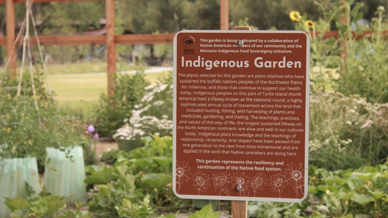 ancestral garden 2.jpeg