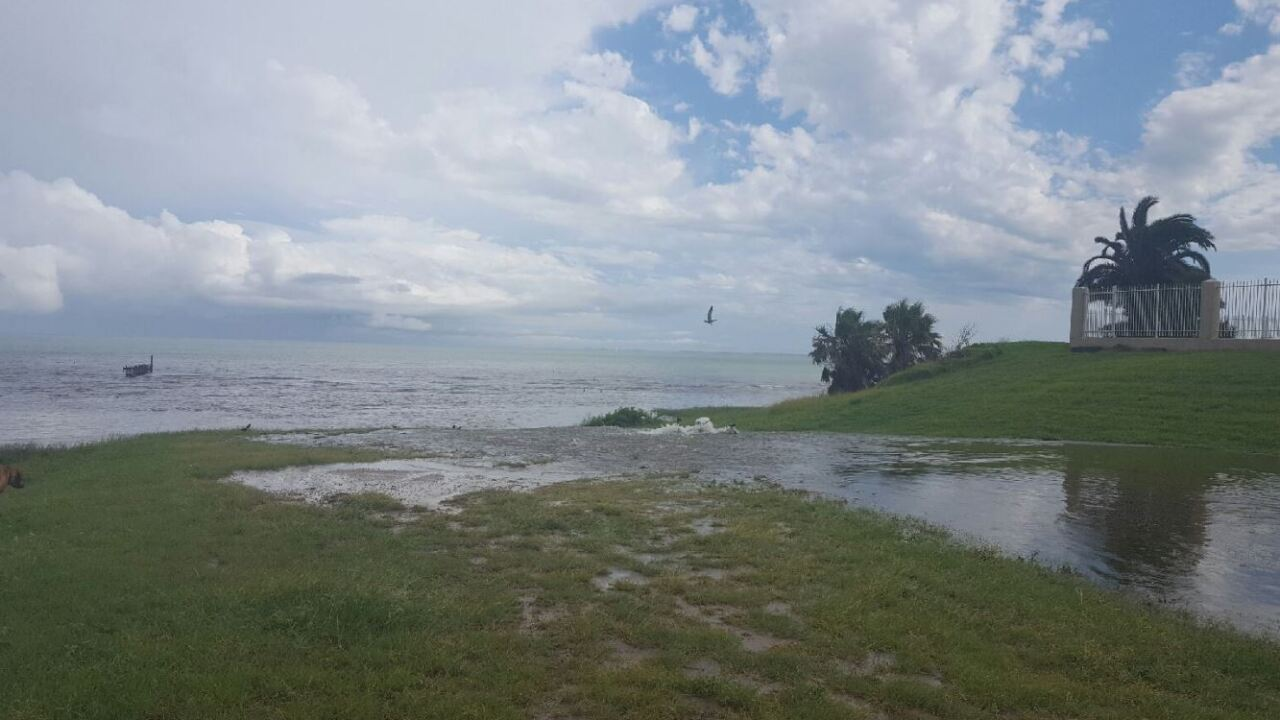 rainrunoffinto the bay6216.JPG