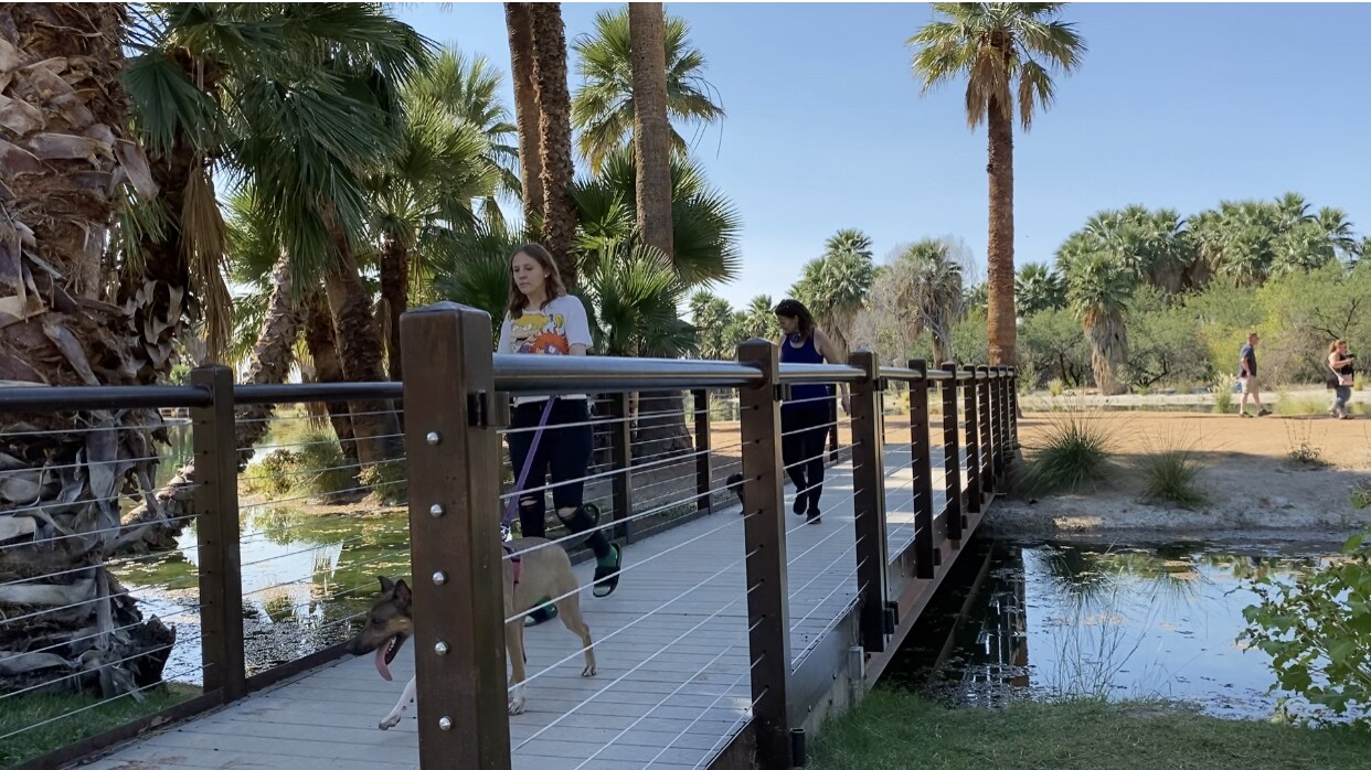New bridge at Agua Caliente Park