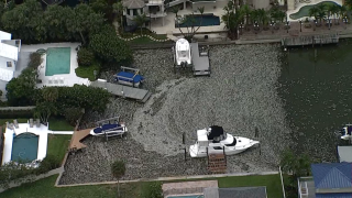 Dead fish surround boats due to red tide in Tampa Bay