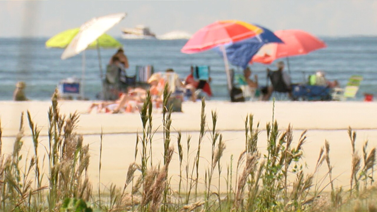 Beachgoers happy for break of red tide toxins