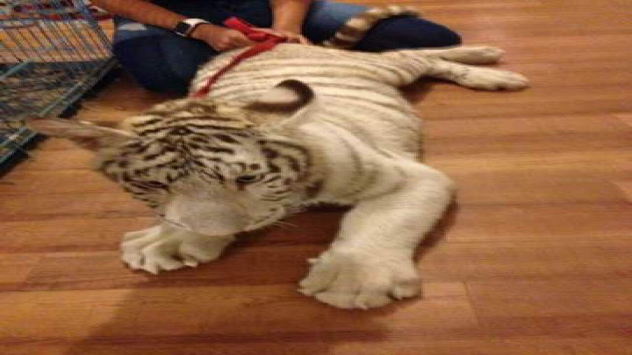 Police: Woman, child lived with exotic animals