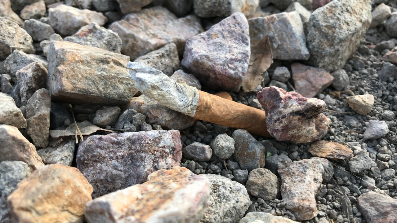 A tossed cigarette butt cost a North Las Vegas man nearly $1200 dollars and a misdemeanor crime on his record