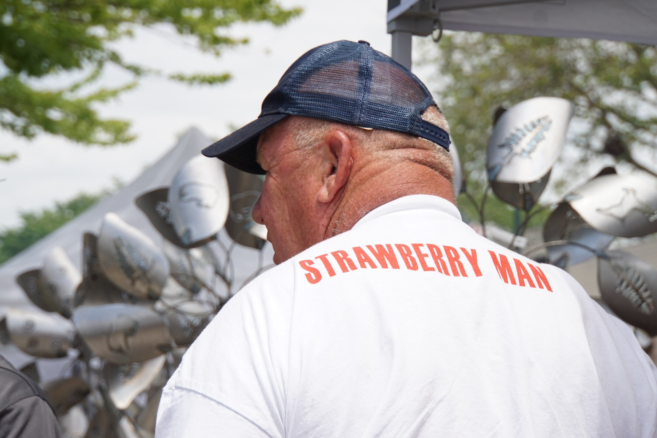 Cedarburg Strawberry Festival