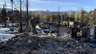 Colorado wildfires: Poor forest management and more homes leading to catastrophic dilemma