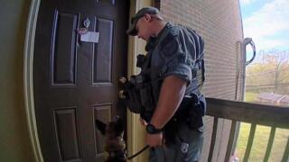 Bad Arrest Image.jpg