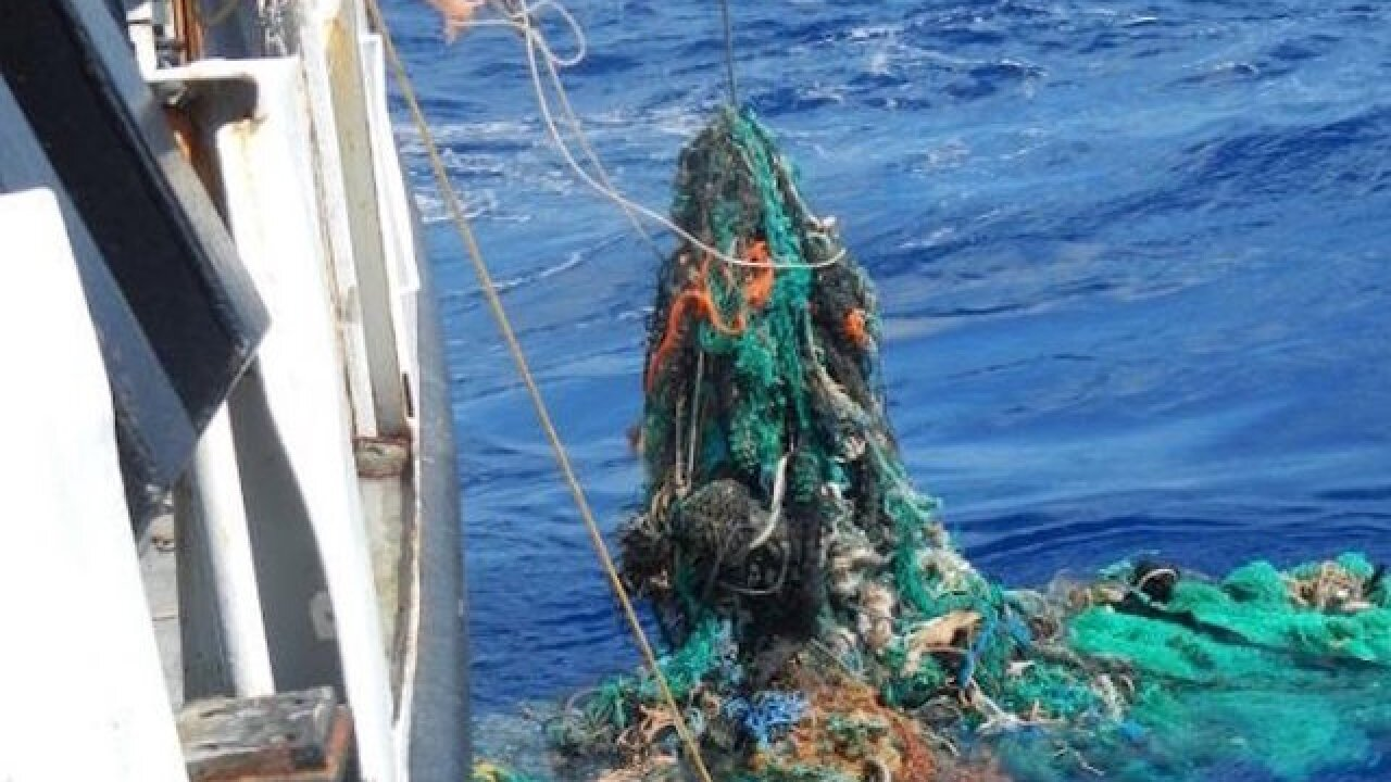 Great Pacific Garbage Patch now three times the size of France