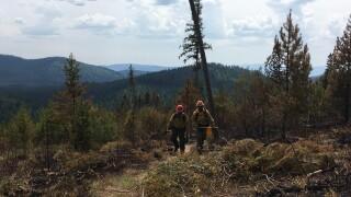 Wagon Mountain Fire