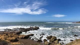 michele sherman's photo of the beach.jpg