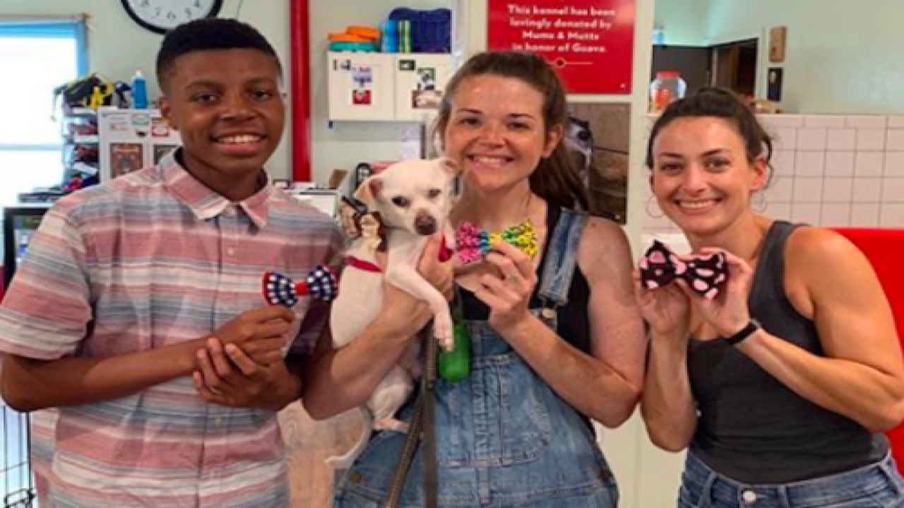 This 13-year-old Boy Designs Bow Ties To Help Pets Get Adopted