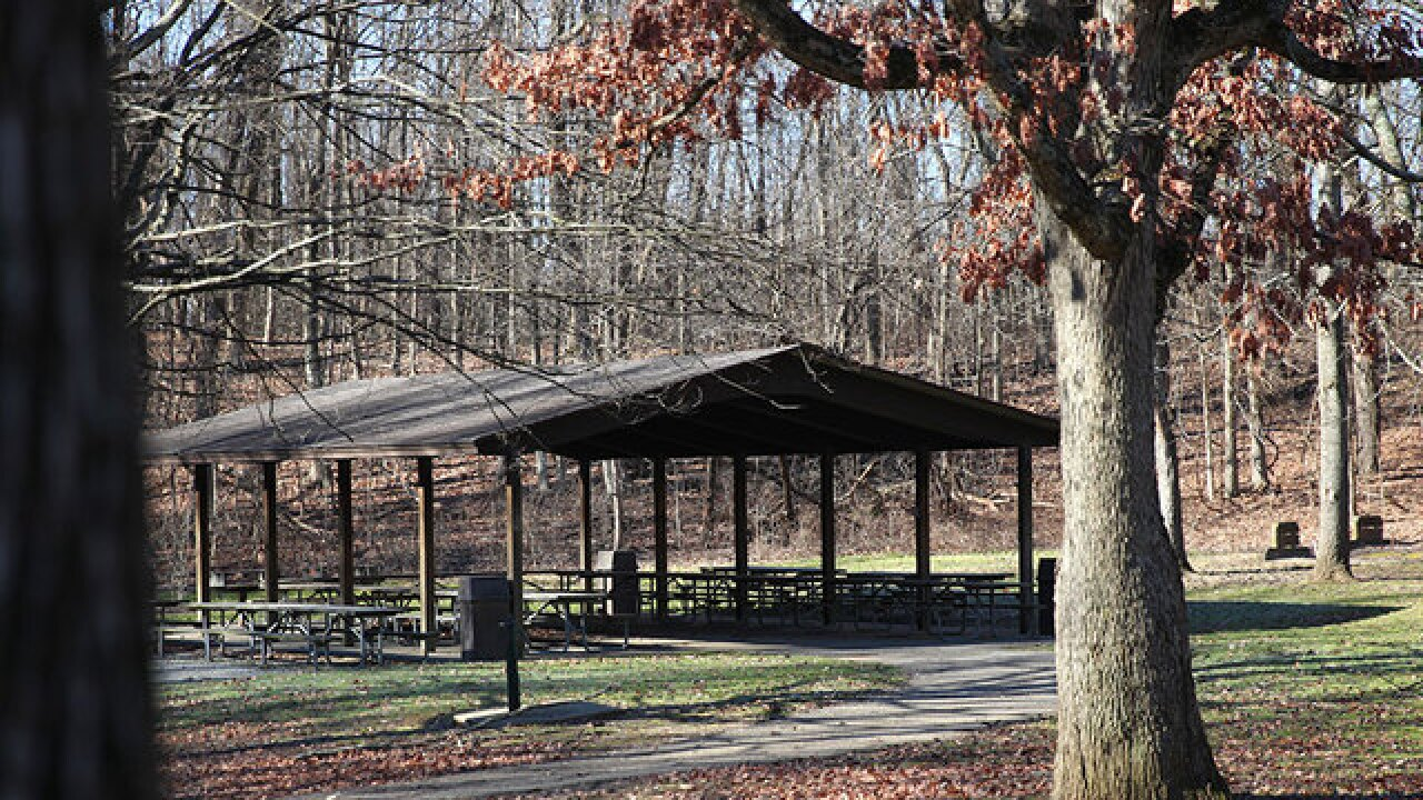 County parks board mulls 2016 levy