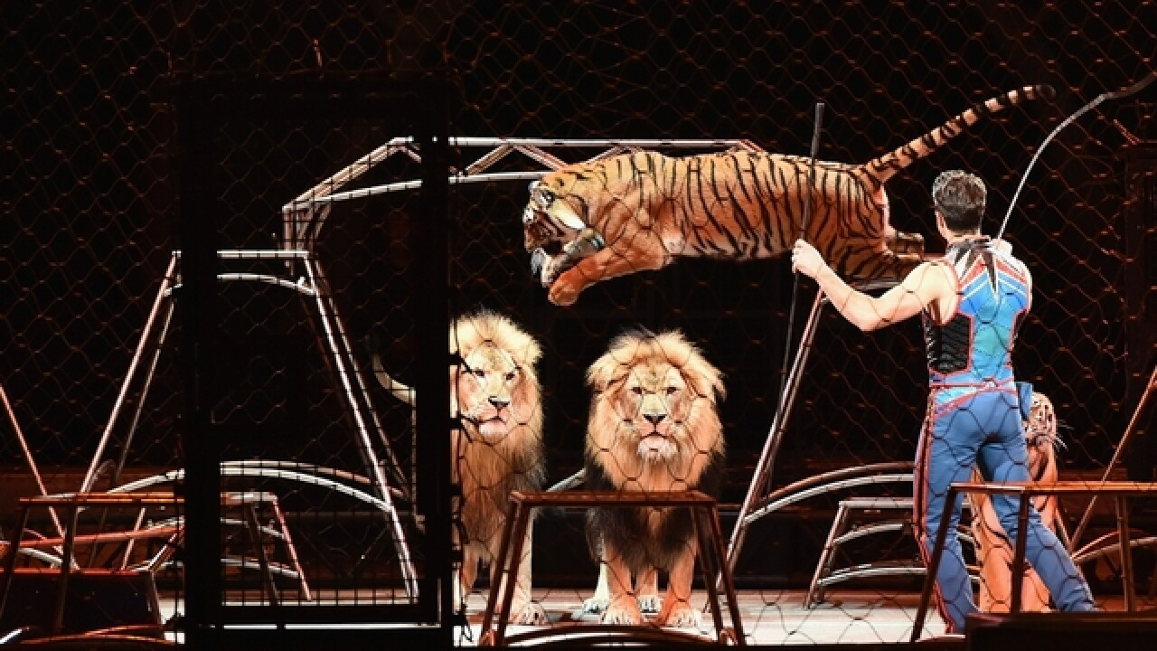 PETA to protest UniverSoul Circus opening day in Detroit with nude tiger