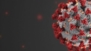 Ask Dr. Nandi:  It's not just Delta other coronavirus variants also worry scientists