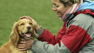 Henderson hosts Bark in the Park on Saturday