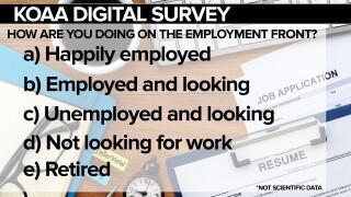 thumbnail_SURVEY Job Front.jpg
