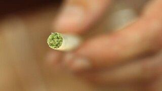 wptv-marijuana-cigarette-.jpg