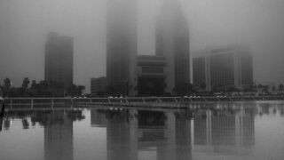 fogic12820.jpg