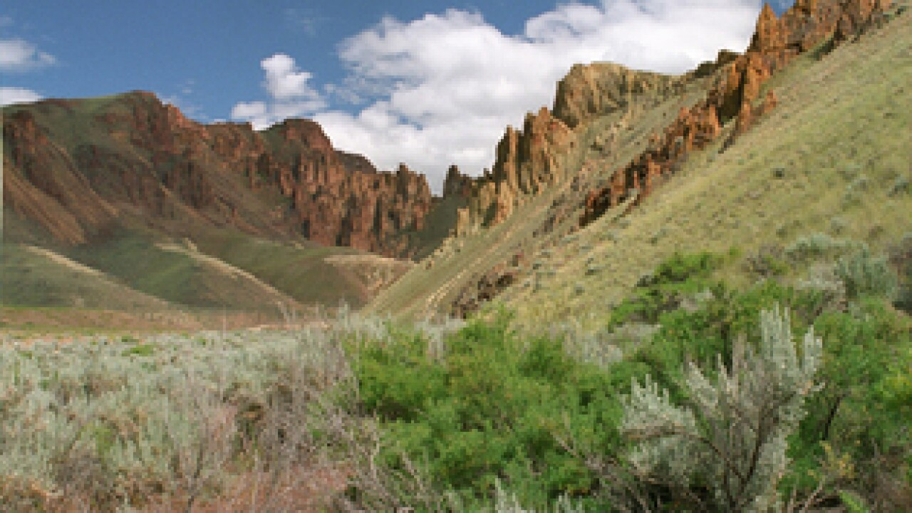 Sparks fly at Owyhee proposal hearing