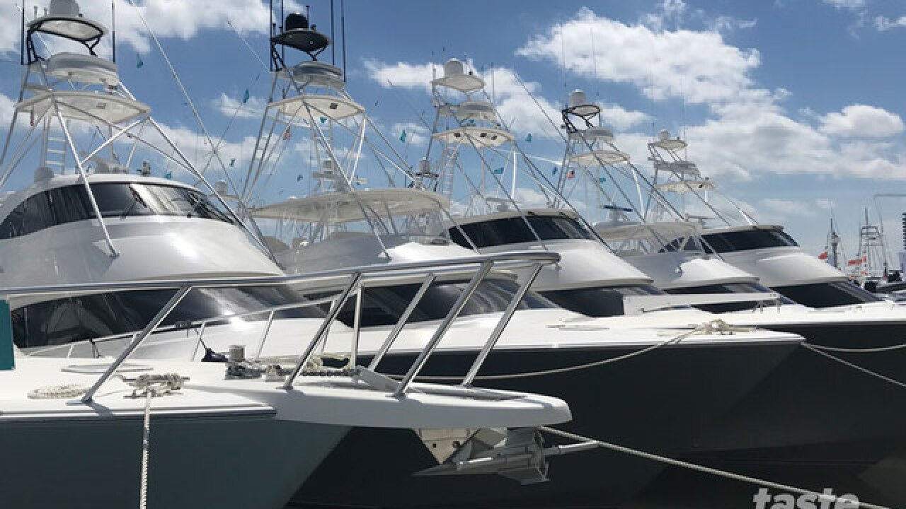 First look inside the Palm Beach International Boat Show