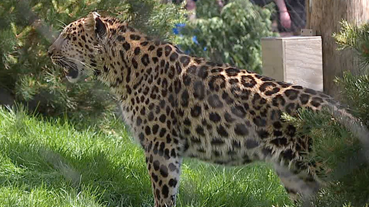 Cleveland Metroparks Zoo opens Asian Highlands