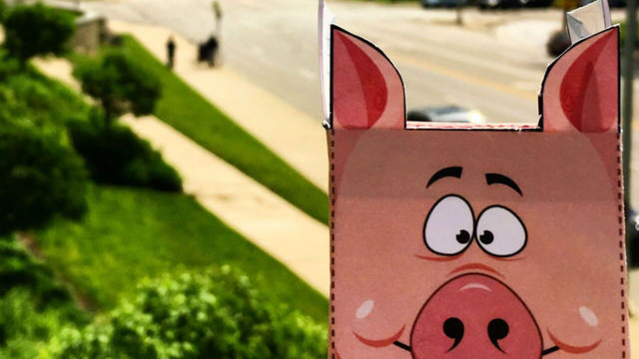 These 9 GIFs explain the Flying Pig perfectly
