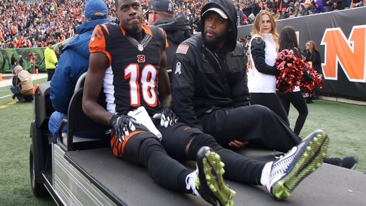 Bengals star A.J. Green has strained hamstring and could return this season, coach says