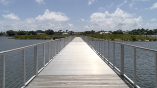 Visitors can stroll down a 556-foot boardwalk that extends to one of three mangrove islands within the Lake Worth Lagoon. Six acres of restored wetlands support local fisheries, wading birds, manatees, and sea turtles. Metered parking is available along Flagler Drive.