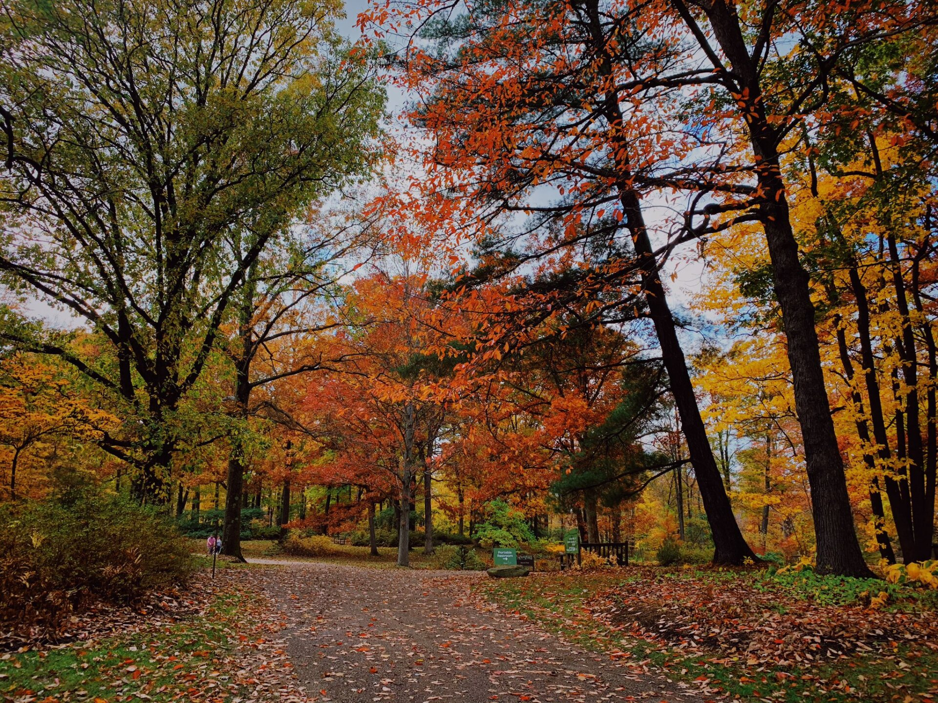 Holden Arboretum1.jpeg