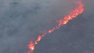 dehesa_fire_flames.jpg