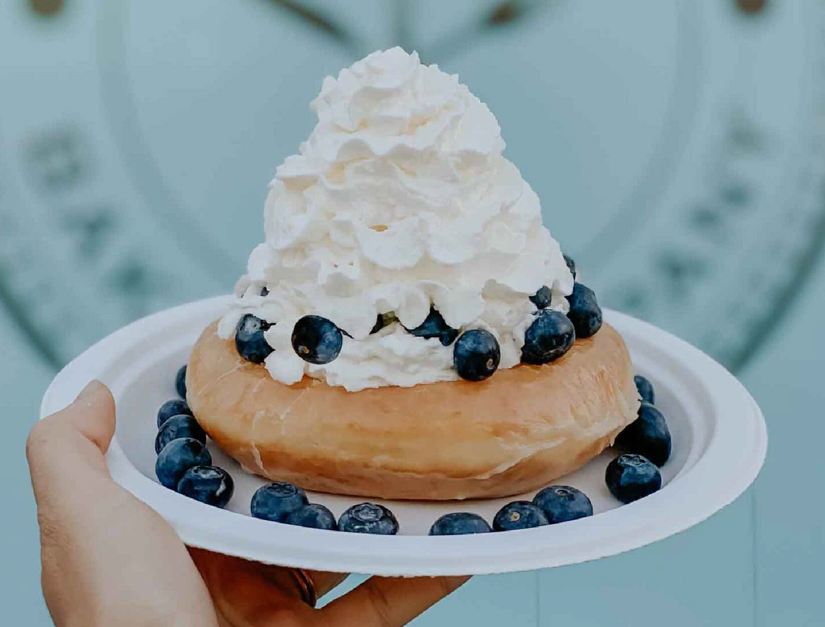 New-Food_Farm-Fresh-Blueberry-Cream.jpg