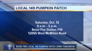 149 pumpkin patch.JPG
