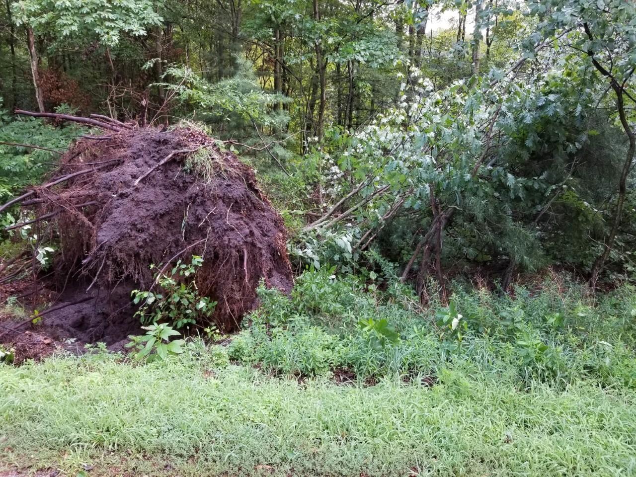 holland storm damage 2.jpg