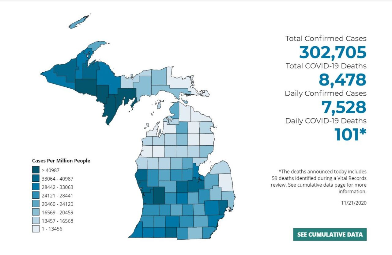 Source: Michigan.Gov/Coronavirus for November 21st 2020