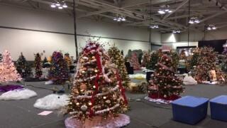 140 trees light up Akron Holiday Tree Festival